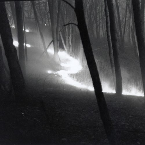 Photograph of a controlled burn